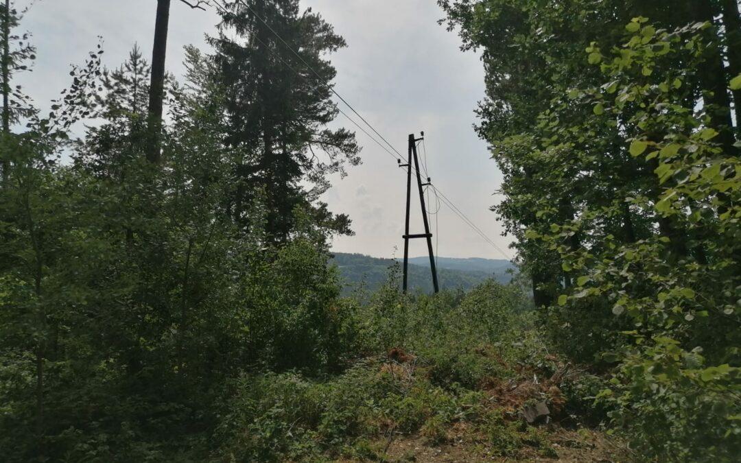 Gerissene Stromleitung löste  Feldbrand aus